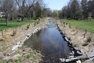 This stream restoration project in Baltimore, Maryland is in an early stage of evolution towards sustainability. A concrete channel that enclosed the stream has been removed, and native tree seedlings have been planted along its banks. Credit: Tamara Newcomer Johnson, University of Maryland